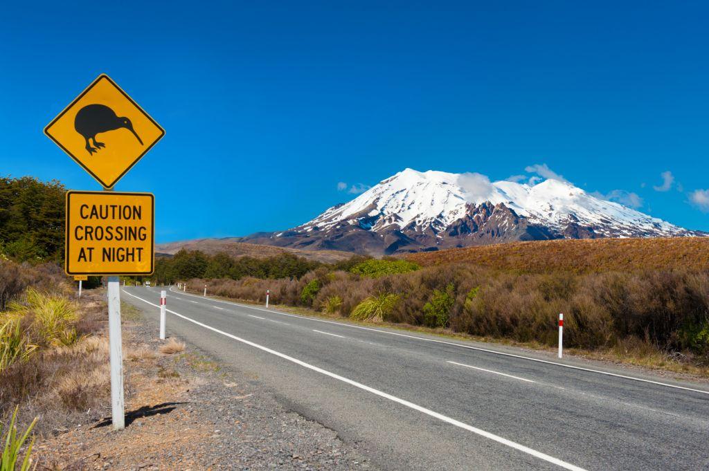 Carretera kiwi