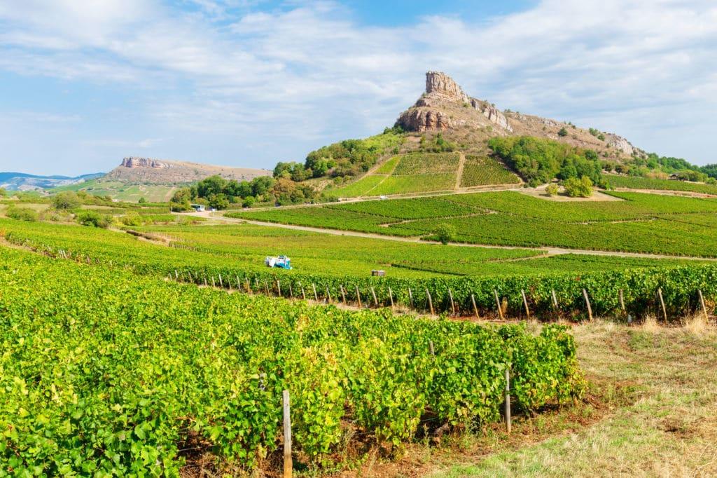 región vinícola Bourgogne