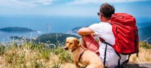 chico con perro mirando el horizonte montaña vacaciones