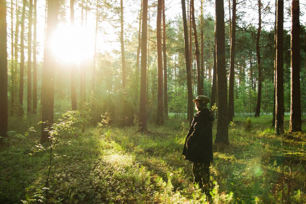 chico en el bosque mirando el sol naturaleza palabras sin traducción Waldeinsamkeit