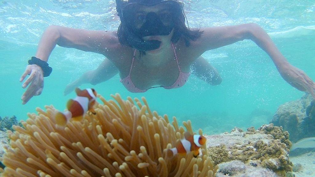 snorkel Filipinas