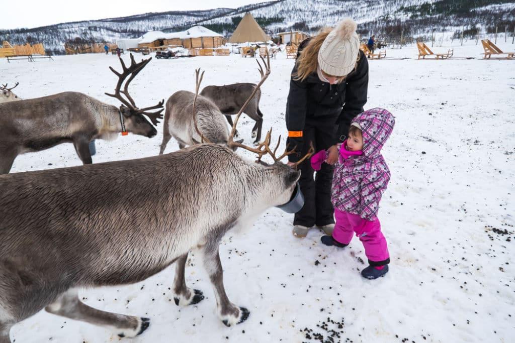 granja de renos de Tromsø niños