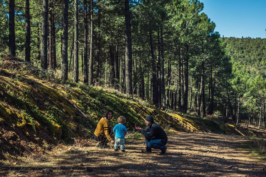 lugares para viajar con niños en verano la Comarca Campo de Daroca algo que recordar