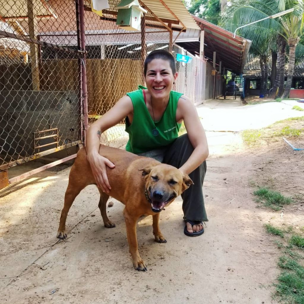 voluntariado con animales en Tailandia Marta Negro Trueque and Travel