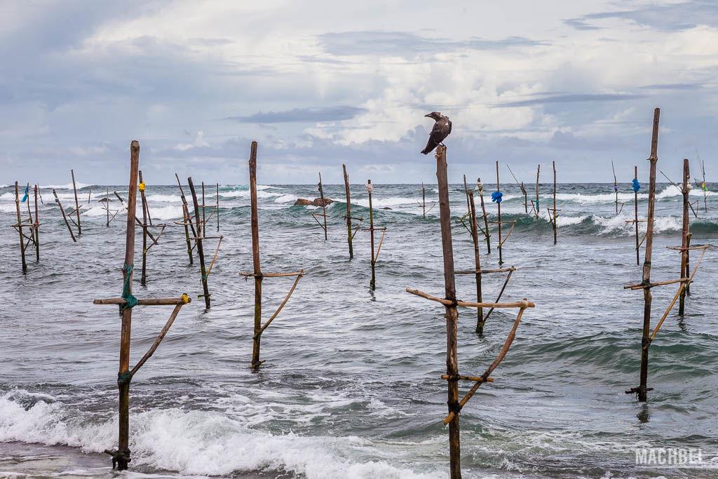 lugares que visitar en Sri Lanka