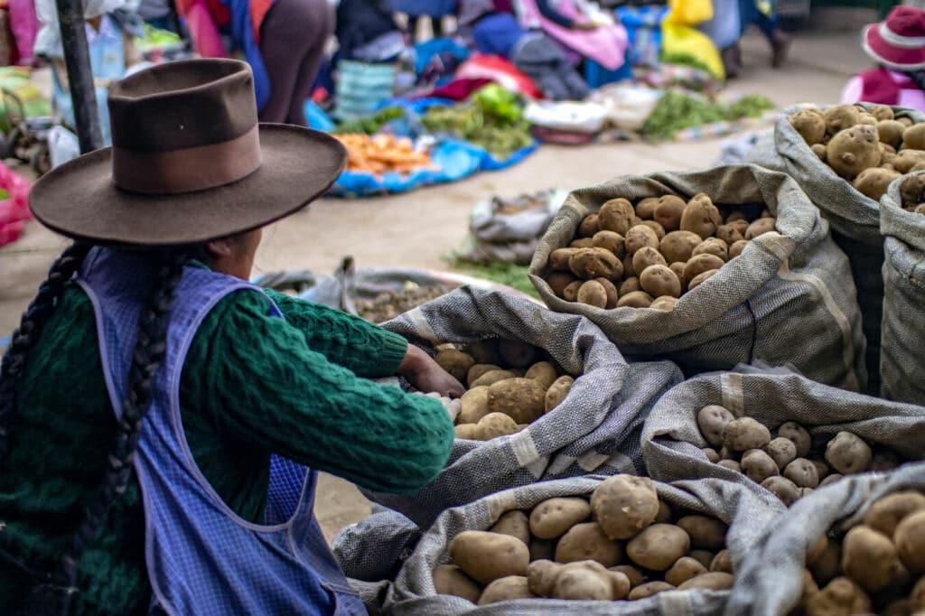 cómo se cocina las patatas en el mundo