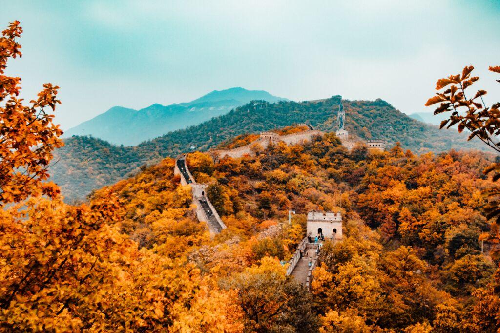 viaje a China de Domi