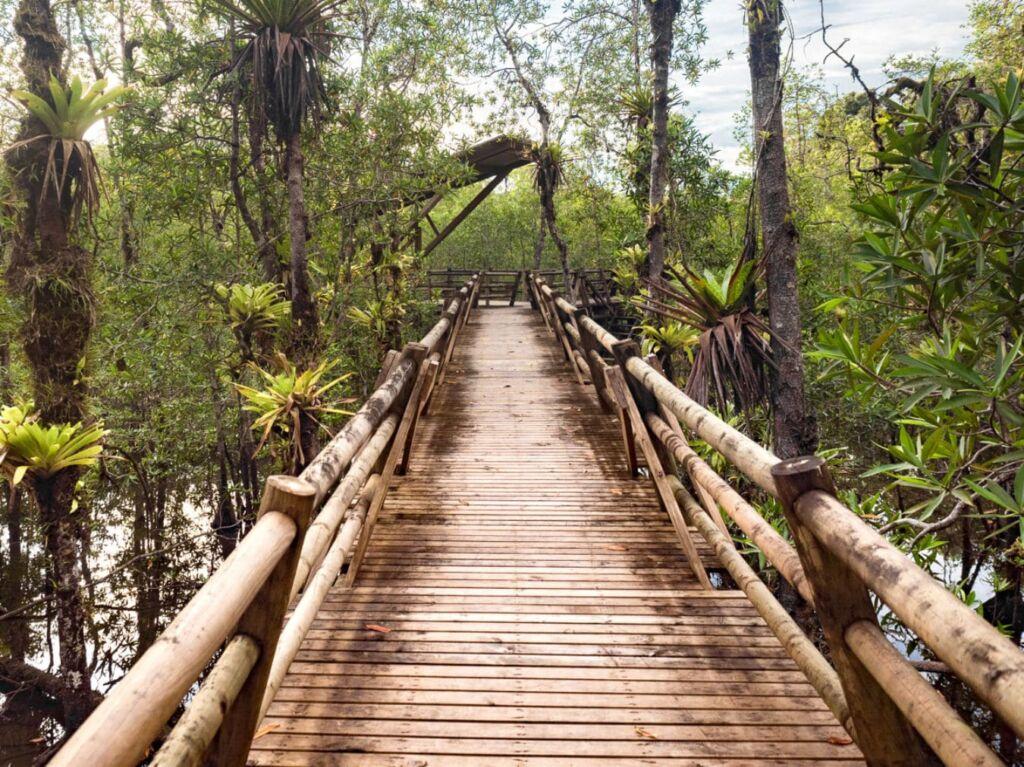 Utria en la Costa del Pacífico en la región de Chocó en Colombia