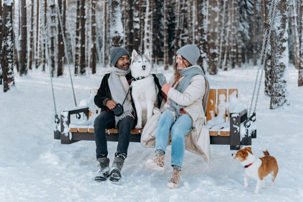 razones por las que viajar con tu perro