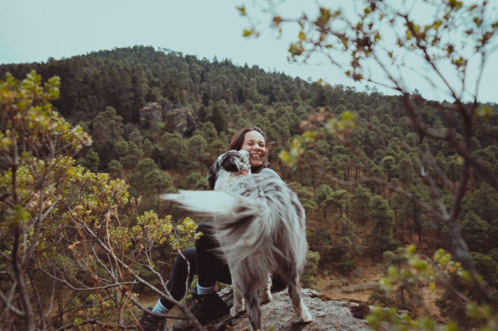 ¿merece la pena viajar con animales?